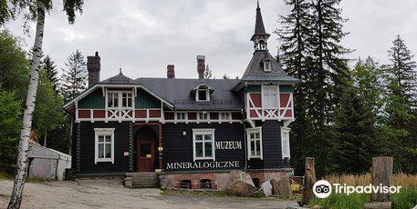 Mineralogical Museum