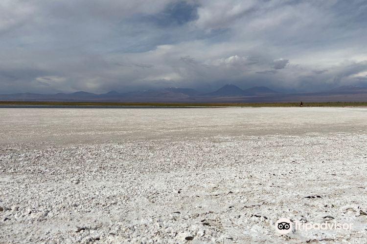 Laguna Cejar3