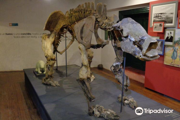 Museo Municipal Dr. Bautista Rebuffo4