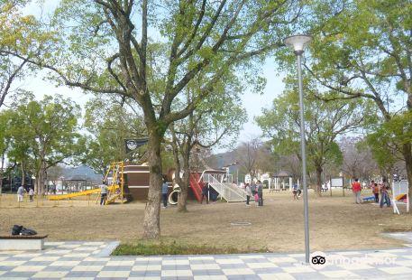 Mitachi Park