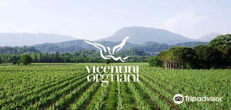 Azienda Agricola Vicentini Orgnani
