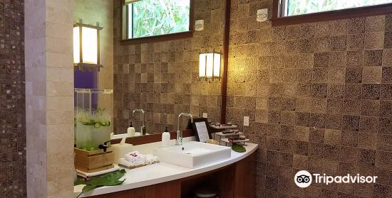 Willow Stream Spa at The Fairmont Kea Lani4