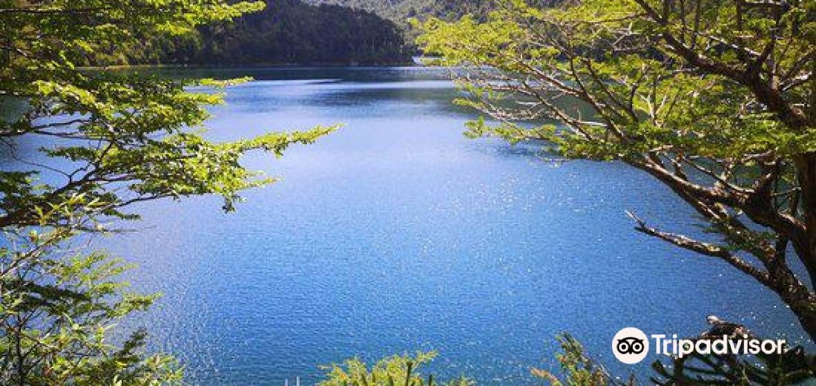 Cautin Province