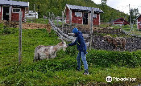 Tromso Mini Zoo