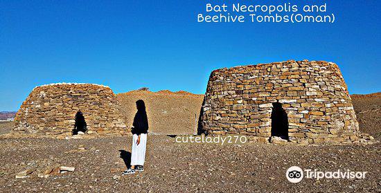 Archaeological Sites of Bat, Al-Khutm and Al-Ayn3