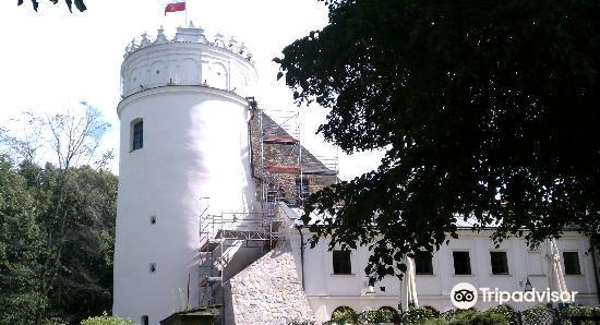 Kazimierzowski Castle2