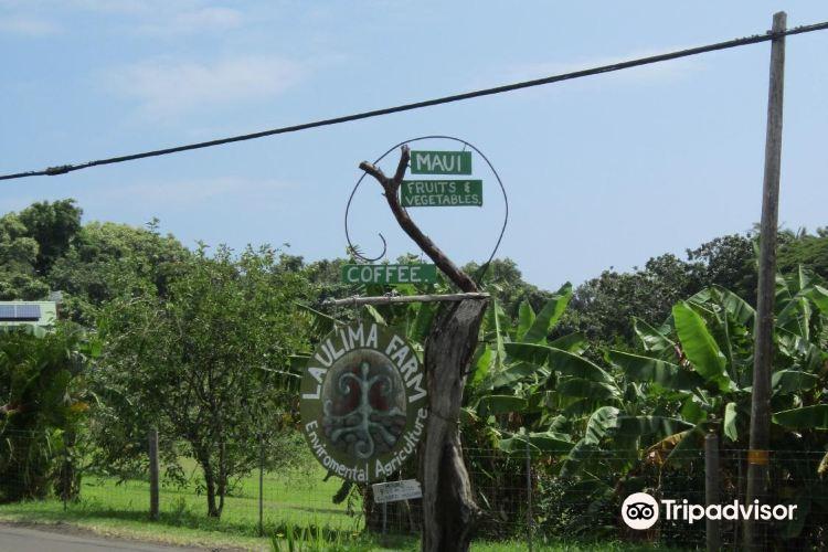 Laulima Farm2