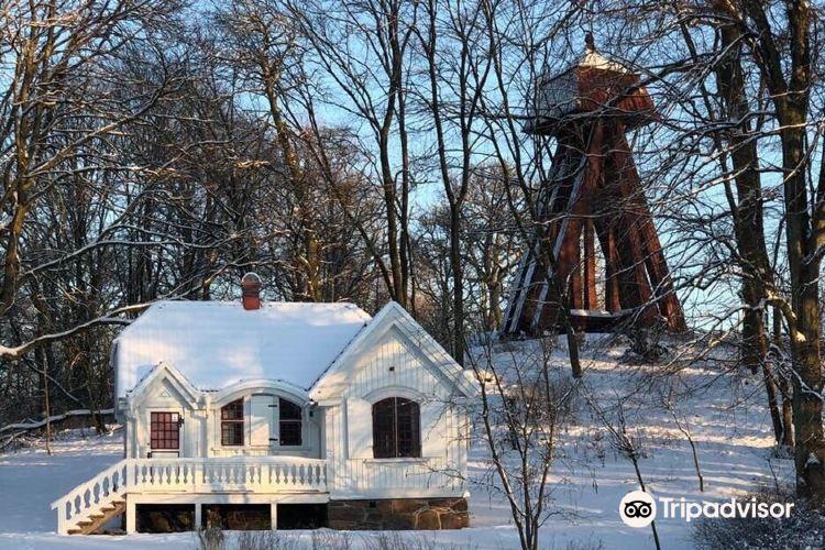 Slottsskogen公園3
