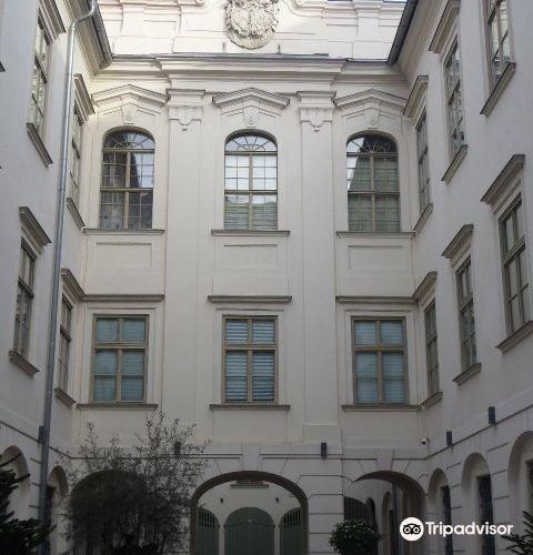 Museum im Palais4