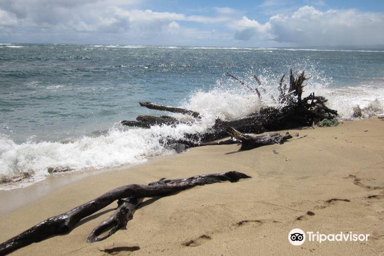 Waihee Beach1