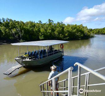 Whitsunday Crocodile Safari