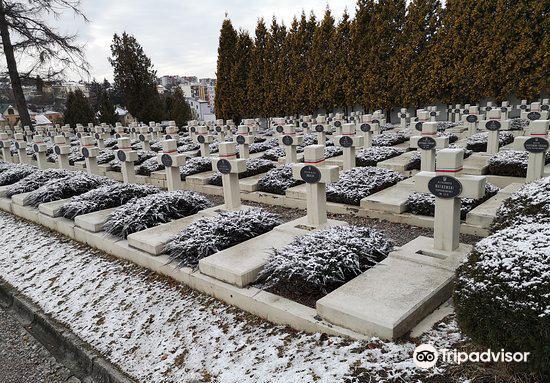 Lychakiv Cemetery3