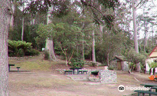 Wellington Park2