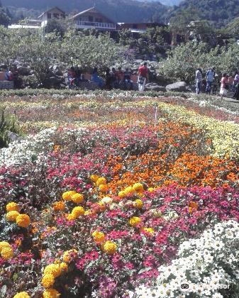Parque Cervantes4
