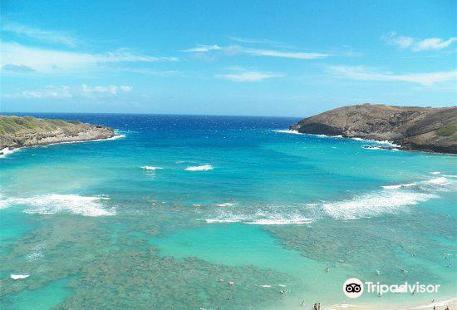 Fun Hawaii Travel - Day Tours