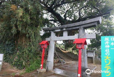 Sakai Shrine