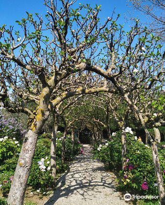 Moutan Botanical Center