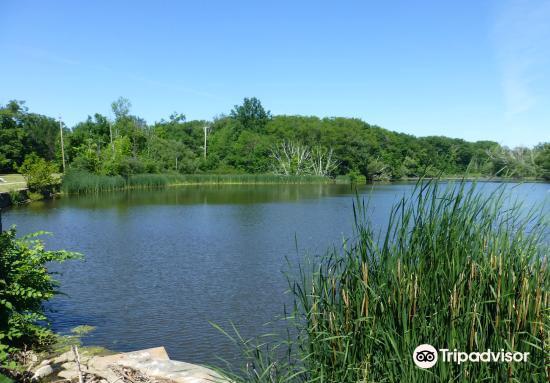 Nature Center at Shaker Lakes1