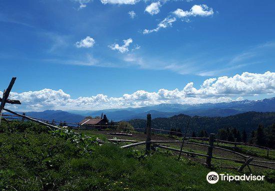 Borjomi-Kharagauli National Park2