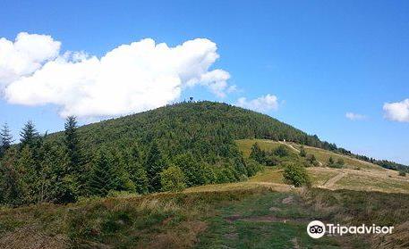 Mogielica Peak