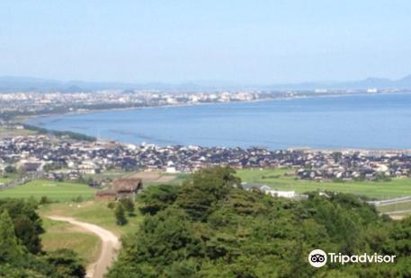 Hill of Hoki Kodai Park