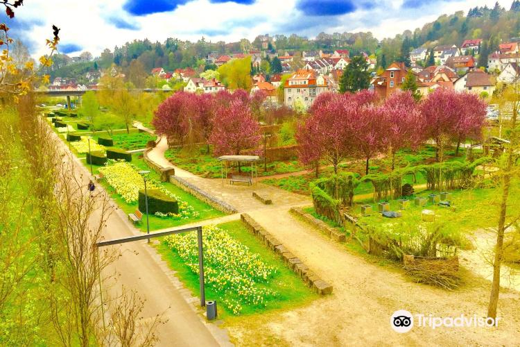 Brenzpark1