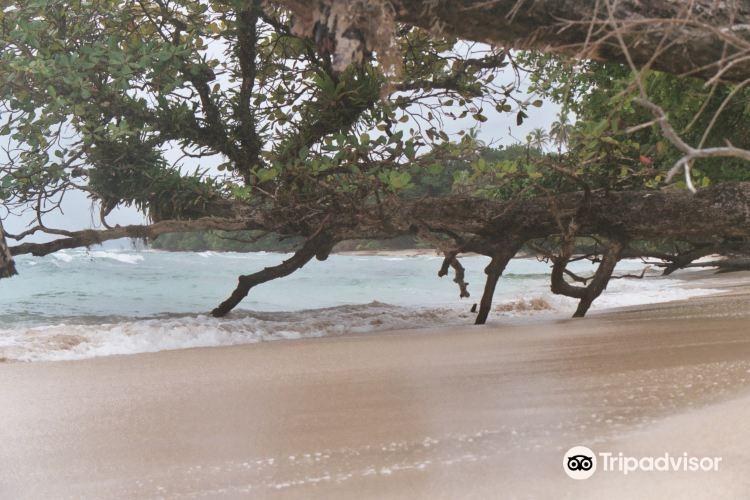 Isla Bastimentos National Marine Park1