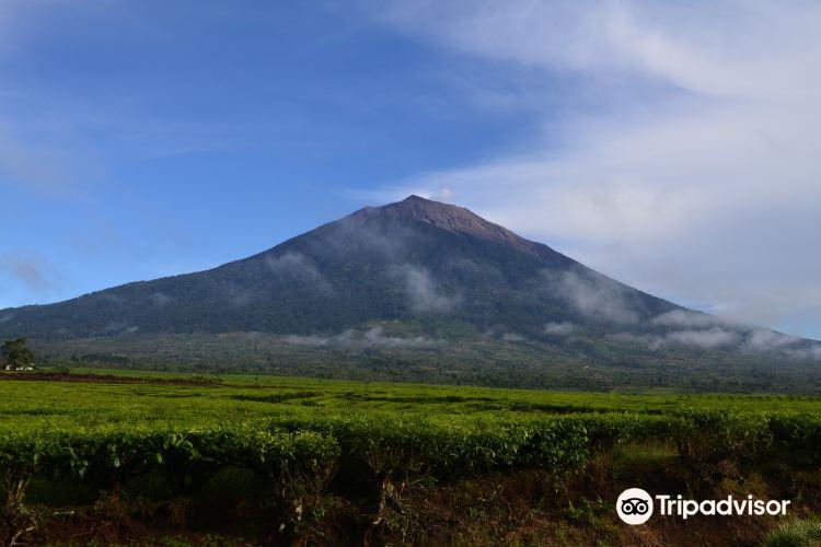Mount Kerinci2
