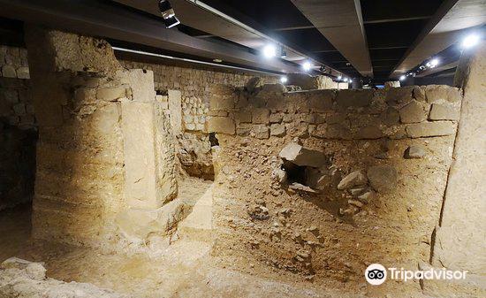 MUHBA Museu Historia de Barcelona4