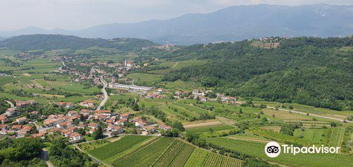 Municipality of Nova Gorica