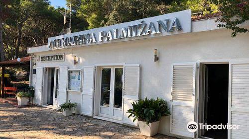 Palmizana Botanical Garden
