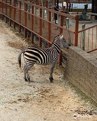Mesker Park Zoo & Botanic Garden3