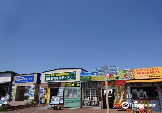 Kikuchi Haruo Photo Gallery3