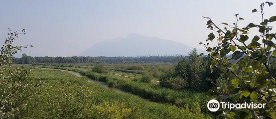 R.W. Starratt Wildlife Sanctuary3