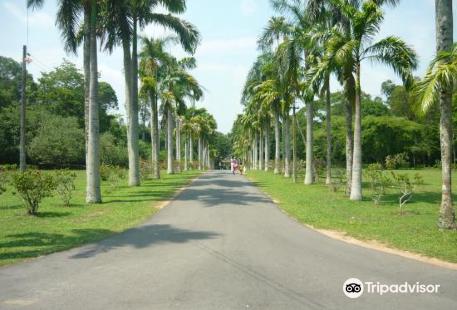 Henerathgoda Botanical Garden