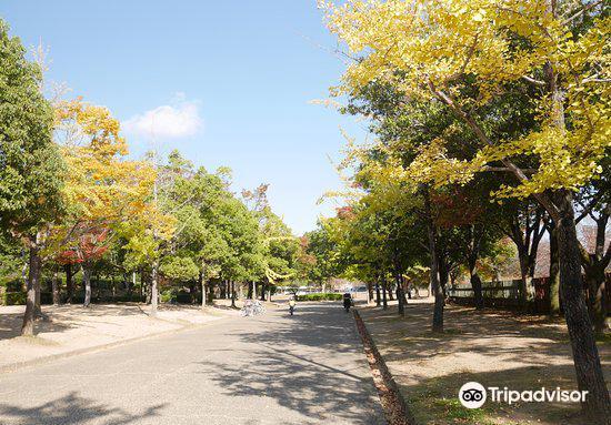 Shirotopia Memorial Park1