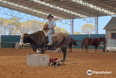 Australian Stockman's Hall of Fame and Outback Heritage Centre