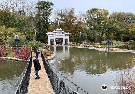 Robin Hill Adventure Park4