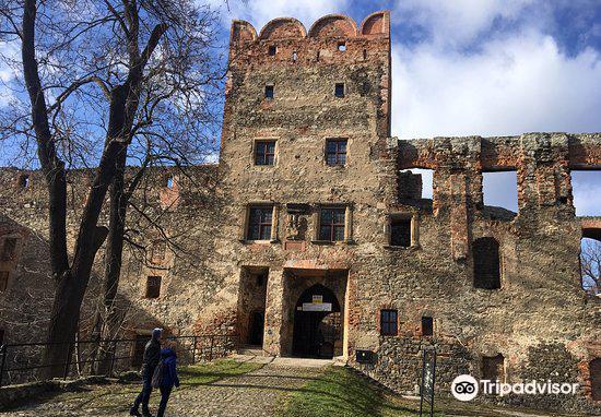 Ruins of Ducal Castle in Zabkowice Slaskie