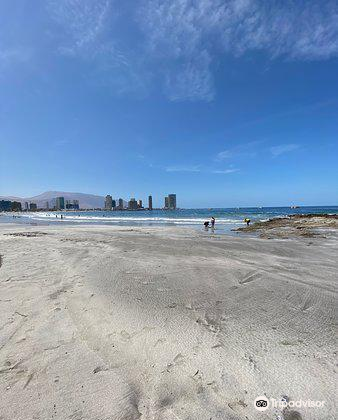 Playa Cavancha1