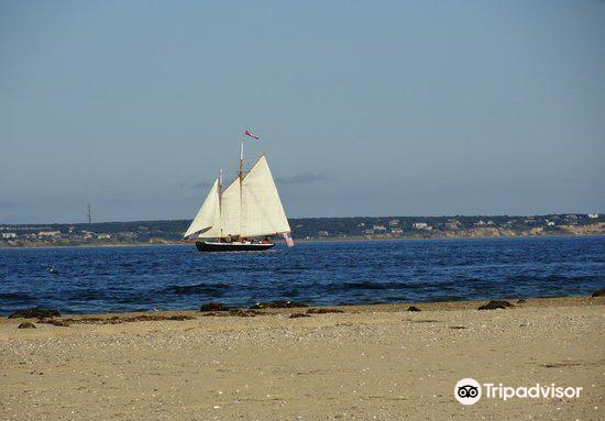 Long Point4