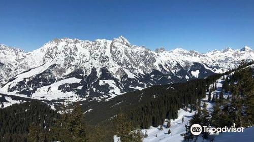 Leoganger Bergbahnen
