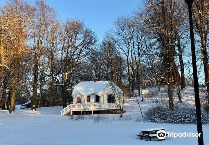Slottsskogen公園4