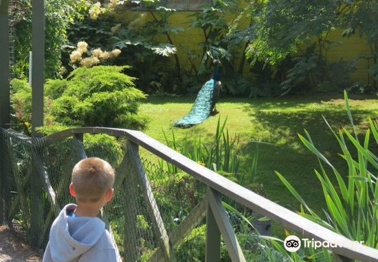 Haugaland Zoo2