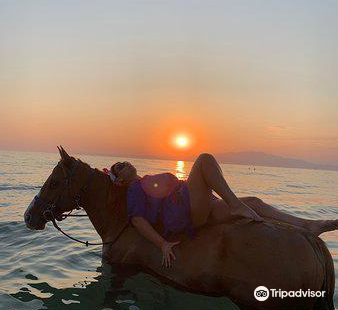 Thassos Horse Club