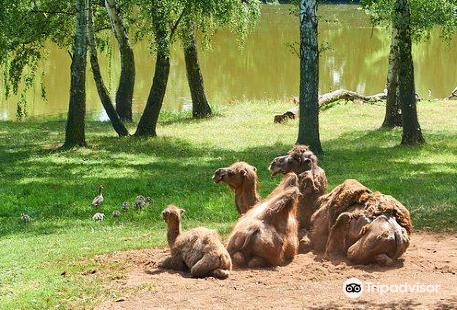 Zoopark Chomutov