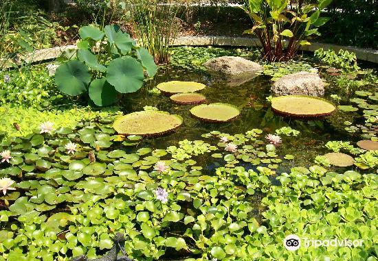 White River Gardens3