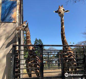 우츠노미야 동물원