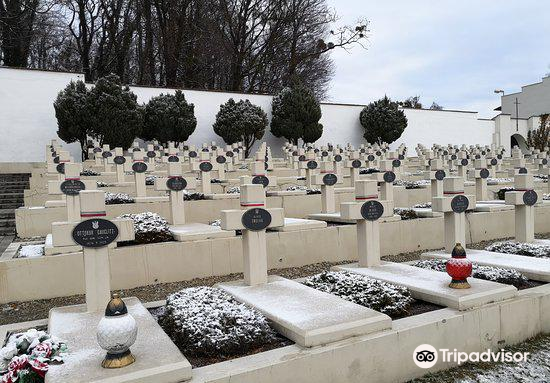 Lychakiv Cemetery4