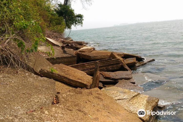 化石貝殼海灘3